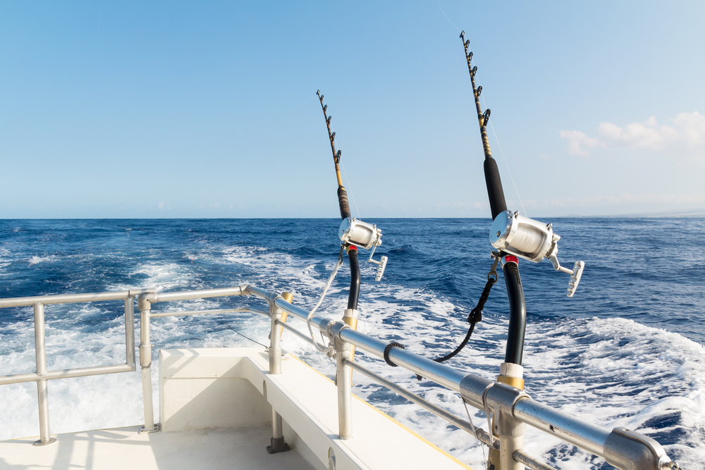 Benefits of A Fishing Charter